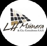 505-506-507-L.H MUNERA & CIA CONSULTORES